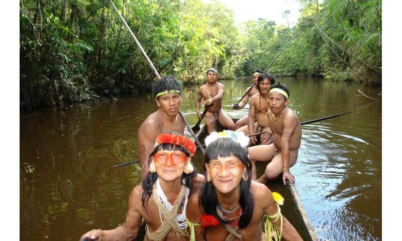 Ideal marriage partners drive Waorani warriors to war