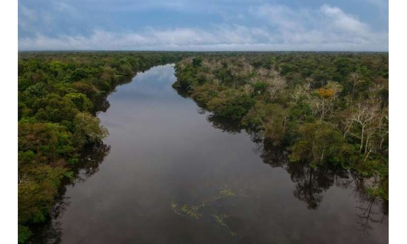 Illegal mining puts at risk rivers like the Jaraua river in the Mamiraua Sustainable Development Reserve in Brazil's Amazonas st