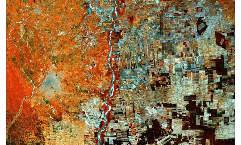 Image: Bolivian deforestation