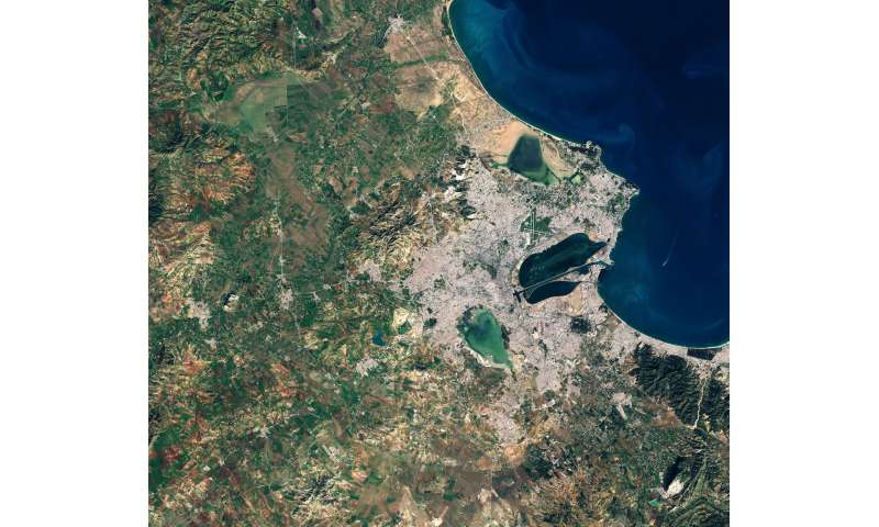 Image: Tunis wetlands