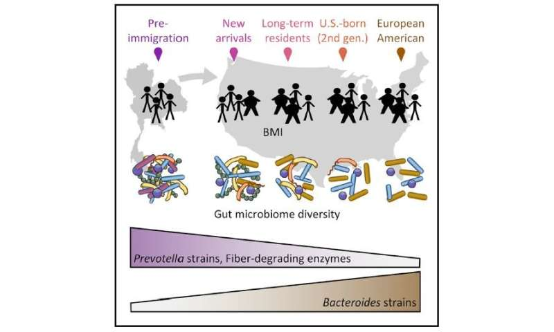 Immigration to the United States changes a person's microbiome
