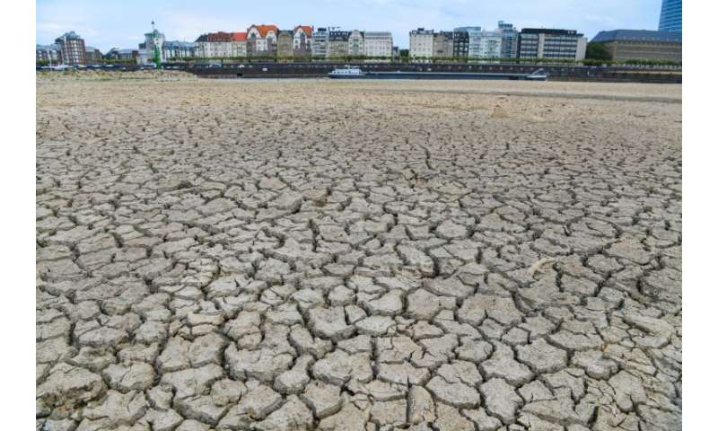 In August, the Rhine was reduced to a trickle compared with its normal flow in Duesseldorf where much of the river bed  dried ou