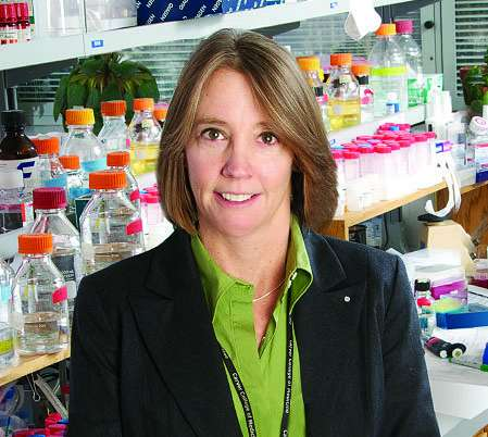 In Huntington's disease, heart problems reflect broader effects of abnormal protein
