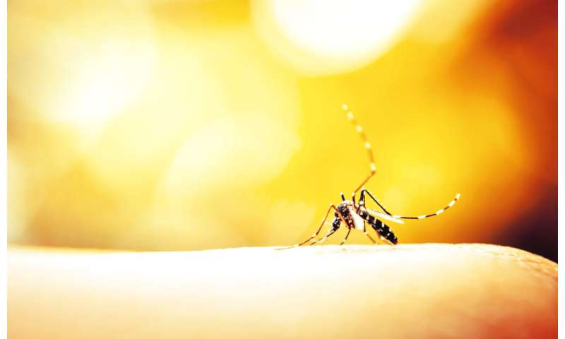Is climate change causing a rise in the number of mosquito and tick-borne diseases?