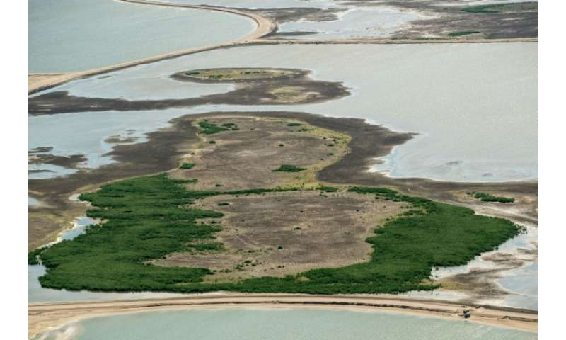 It's hoped a new artificial archipelago of five islands will bring nature back to the area
