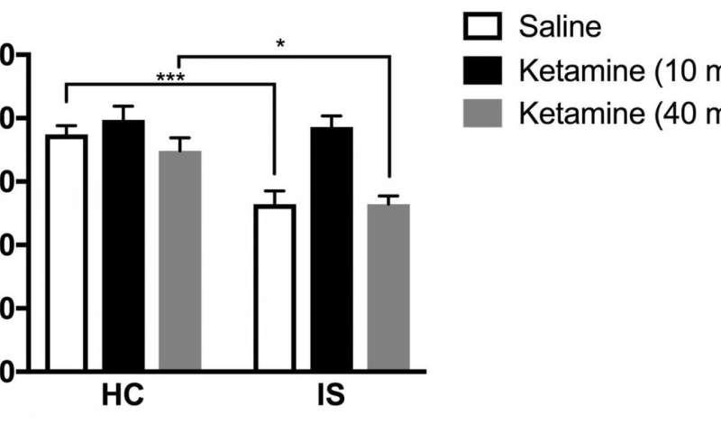 Ketamine works for female rats, too