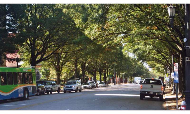 Lack of water is key stressor for urban trees