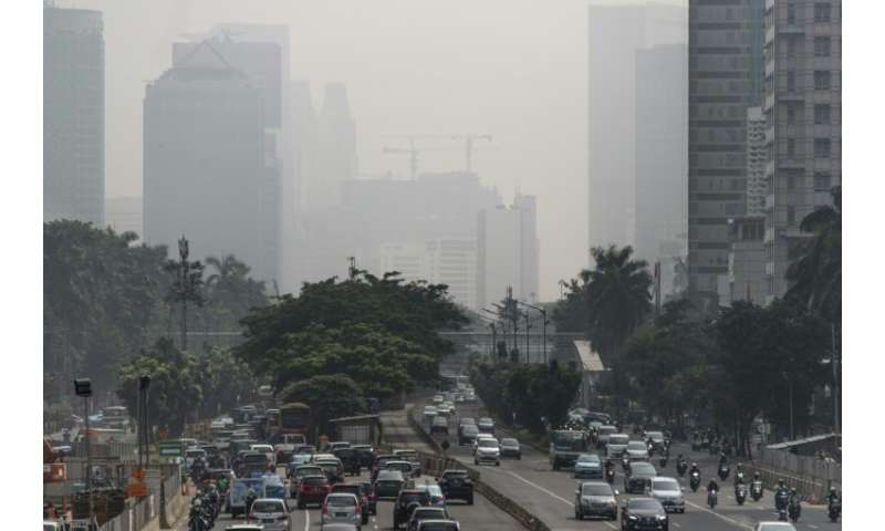 Land decay caused by factors including pollution—as seen here in Jakarta, Indonesia—and city expansion is undermining the well-b