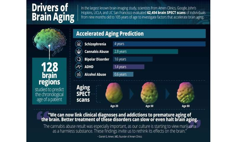 Largest brain study of 62,454 scans identifies drivers of brain aging