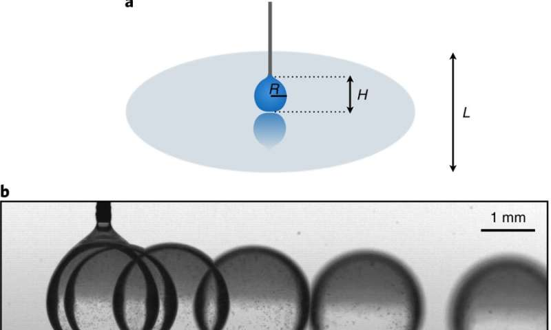 Leidenfrost effect drops found to be self-propelled