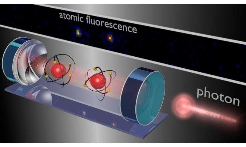 Light controls two-atom quantum computation