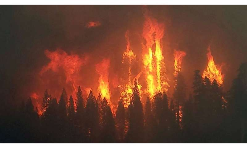 Local winds play key role in some megafires