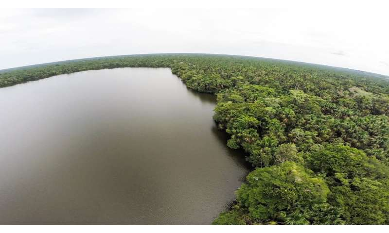 Major natural carbon sink may soon become carbon source