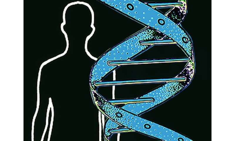 Males with <i>BRCA</i> mutations have increased risk of certain cancers