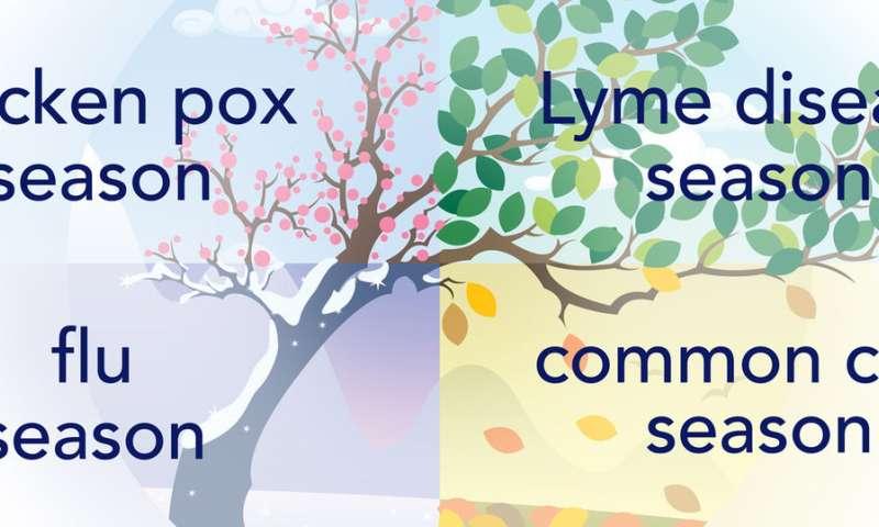 Mark your calendar: All infectious diseases are seasonal
