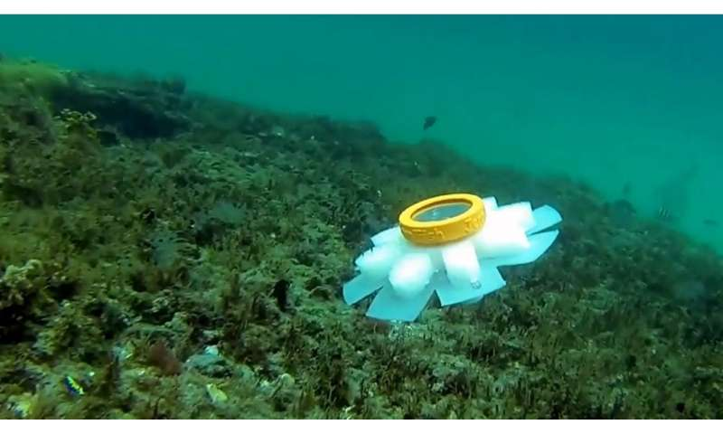 Meet the new guardians of the ocean – robot jellyfish