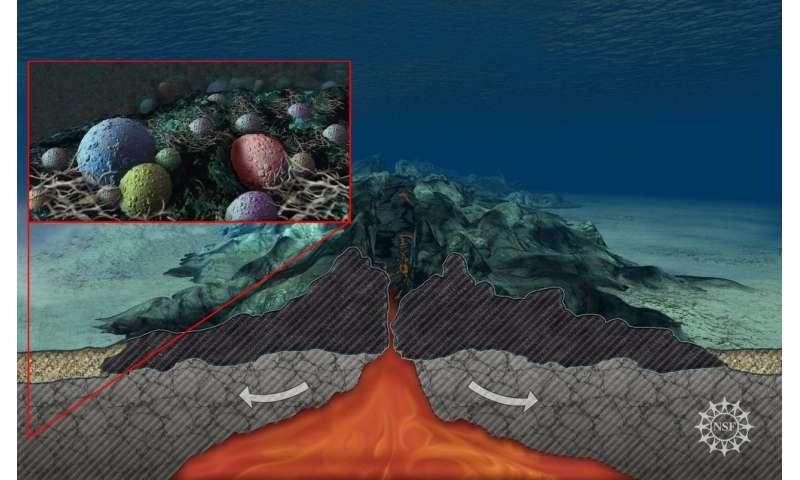 Microbes in underground aquifers beneath deep-sea Mid-Atlantic Ridge 'chow down' on carbon