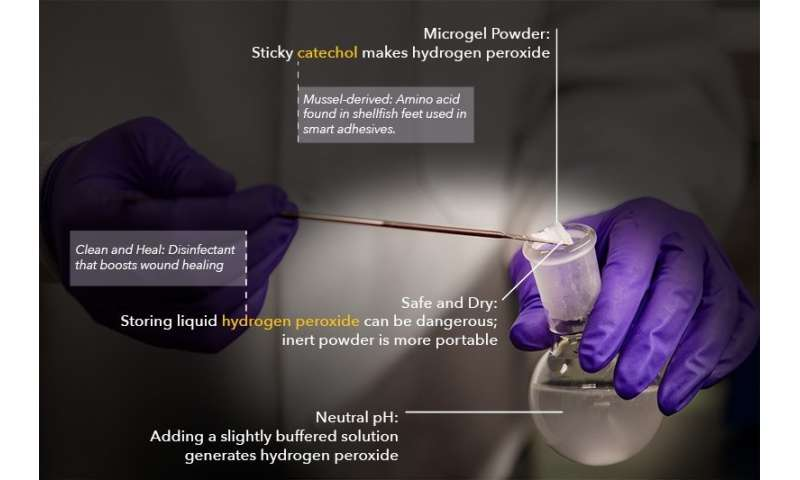 Microgel powder fights infection and helps wounds heal