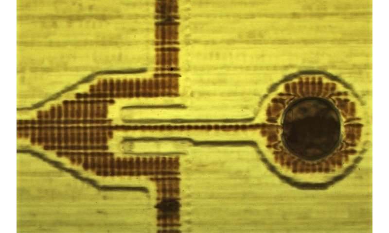 Micro-manufacturing technology promises a revolution in blood testing