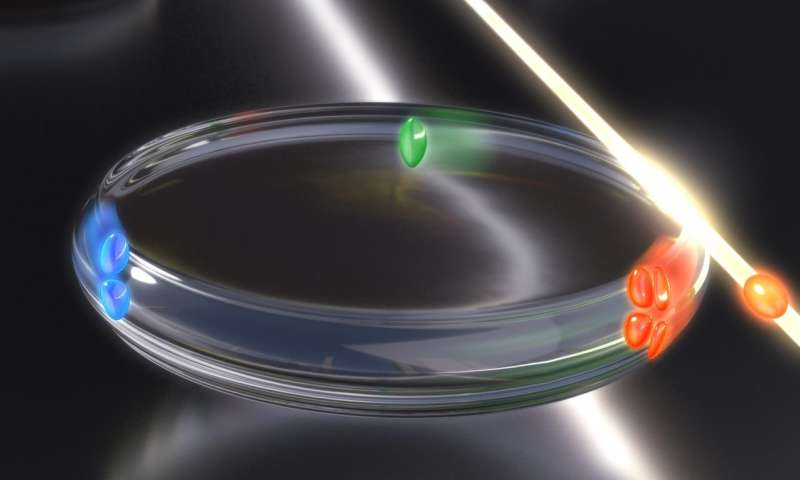 Microresonators offer a simpler approach to sensing with light pulses