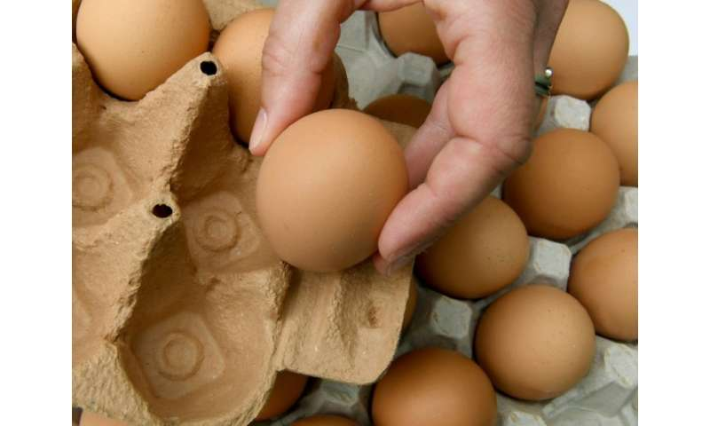 Millions of eggs had to be pulled from supermarket shelves during a tainted egg scandal that spread to 45 countries
