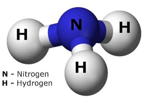 Missing link for solar hydrogen is... ammonia?