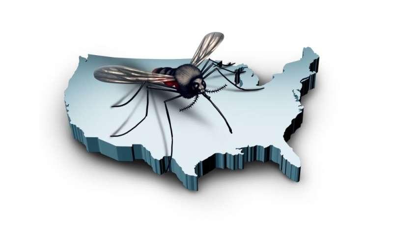 Mosquitoes spreading zika virus in parts of U.S.: CDC