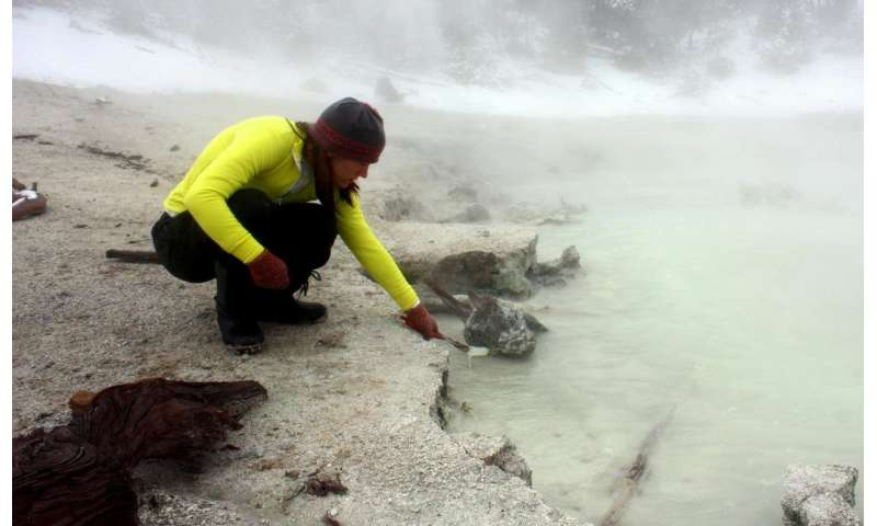 MSU researchers reveal findings about virus that lives in Yellowstone hot springs