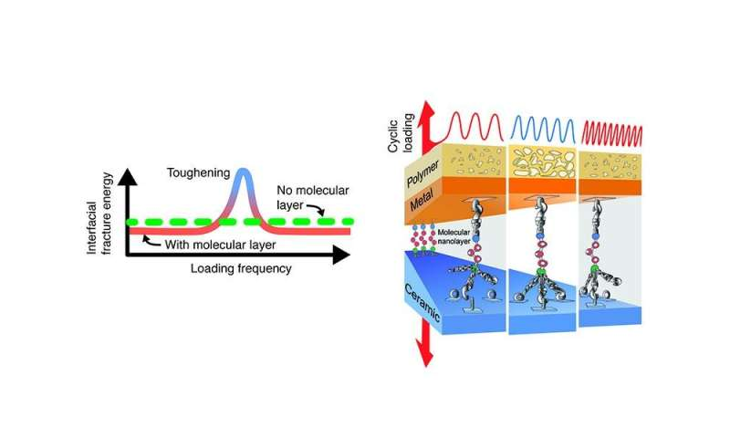 Nanoglue can make composites several times tougher during dynamic loading