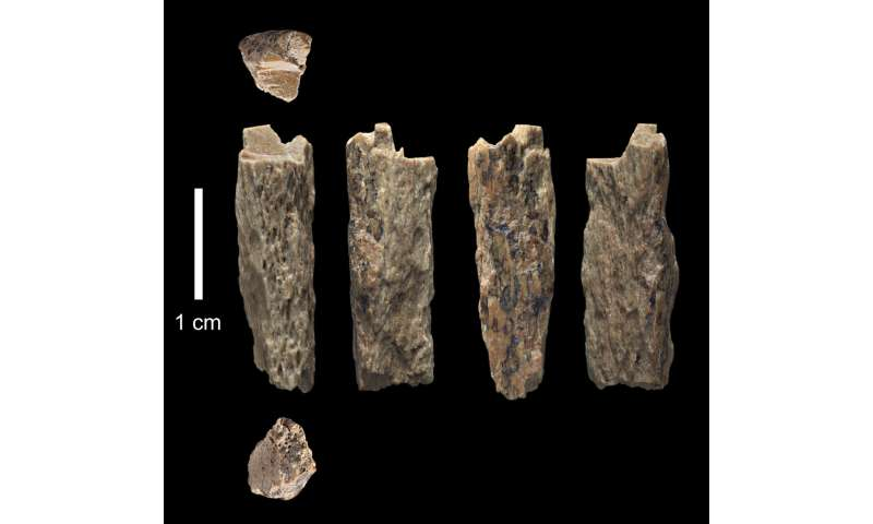 Neandertal mother, Denisovan father!