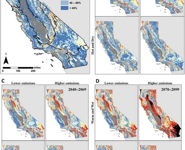 Nearly half of California's vegetation at risk from climate stress