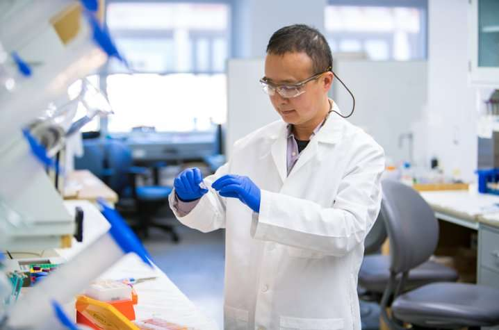 New Markey study shows promise for targeting breast cancer metastasis