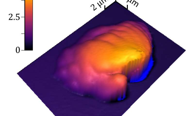 New NIST method measures 3D polymer processing precisely
