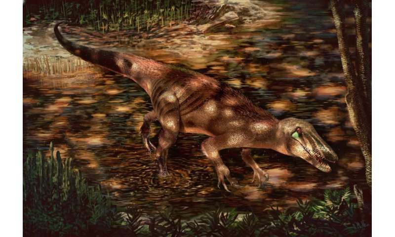 New Patagonian predator sheds light on mysterious meat-eating dinosaur group
