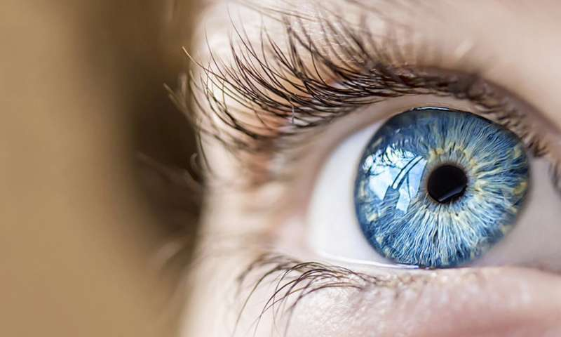 New study offers added hope for patients awaiting corneal transplants