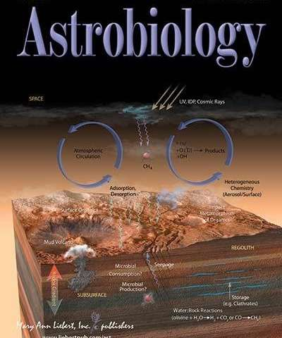 New study supports survival of microbes and organic compounds in space