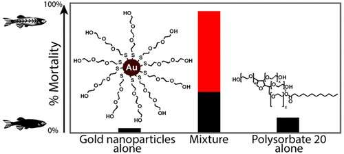 New testing finds synergistic combination leads to toxicity in nanomaterials