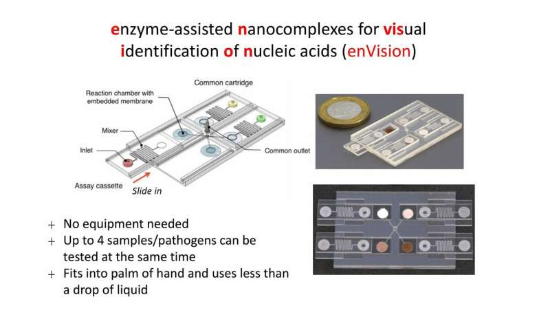 New test kit enables quick, accurate, and inexpensive screening of diseases