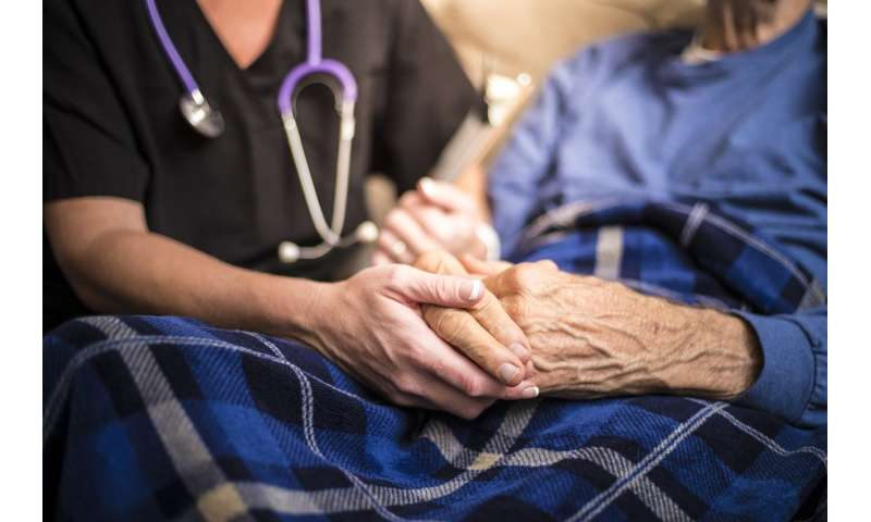 what is the hospice movement euthanasia