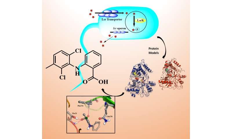 Novel antibacterial drugs developed at University of Eastern Finland