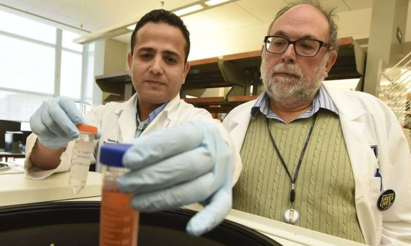 Novel cancer vaccine strategy blocks death of tumor-specific cytotoxic T cells