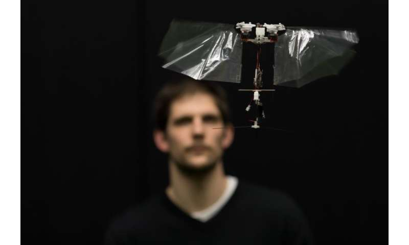 Novel flying robot mimics rapid insect flight