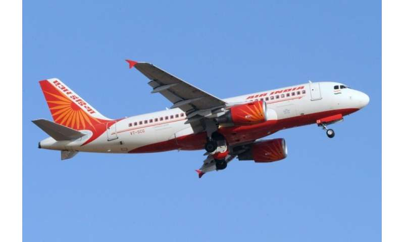 Once the country's monopoly airline, Air India has lost considerable market share to competitors