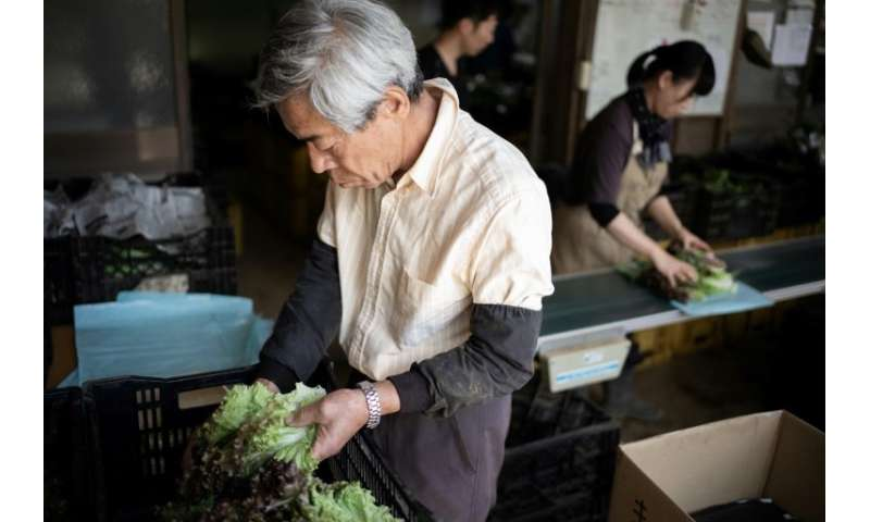 One of the problems faced by shops offering organic food is a Japanese obsession with how their fruit and vegetables look and ar