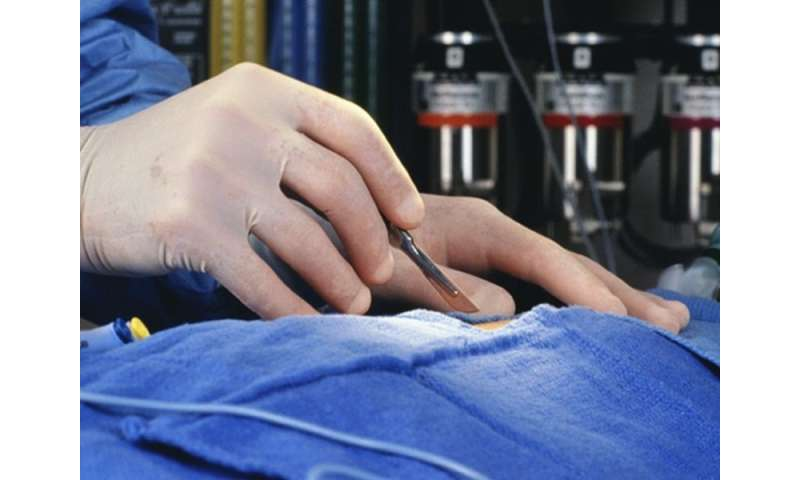 One-third of canadian patients get hip fx repair within 24 hours