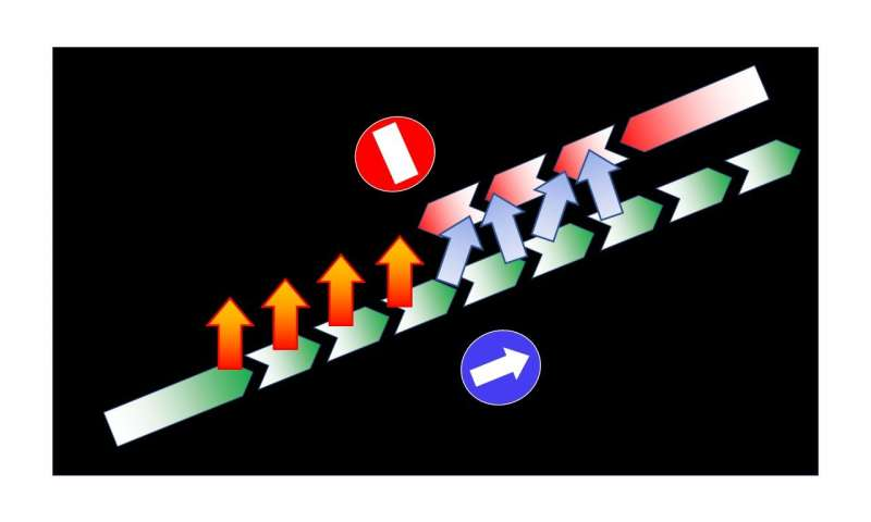One-way roads for spin currents