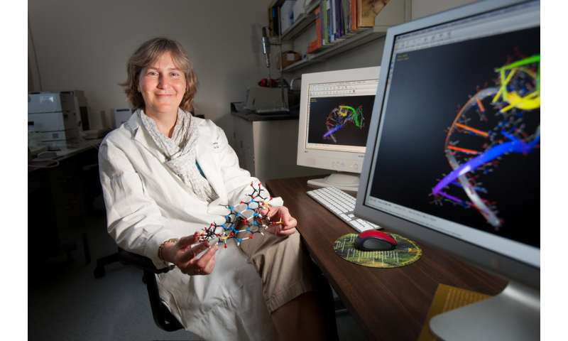 OSC helping OU researcher revolutionize drug discovery with RNA in the spotlight