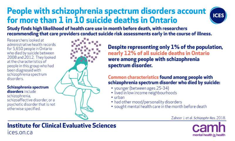 People with schizophrenia account for more than one in 10 suicide cases