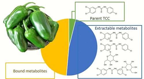 Pepper plant sops up personal care product antibiotic