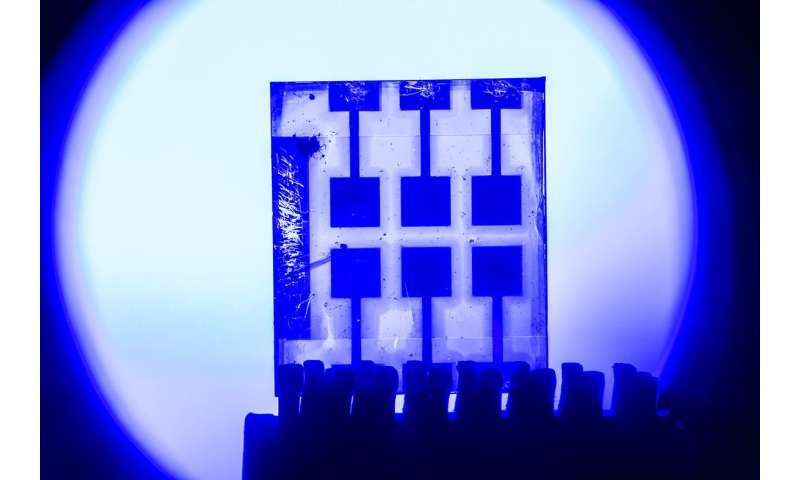 Perovskites – materials of the future in optical communication